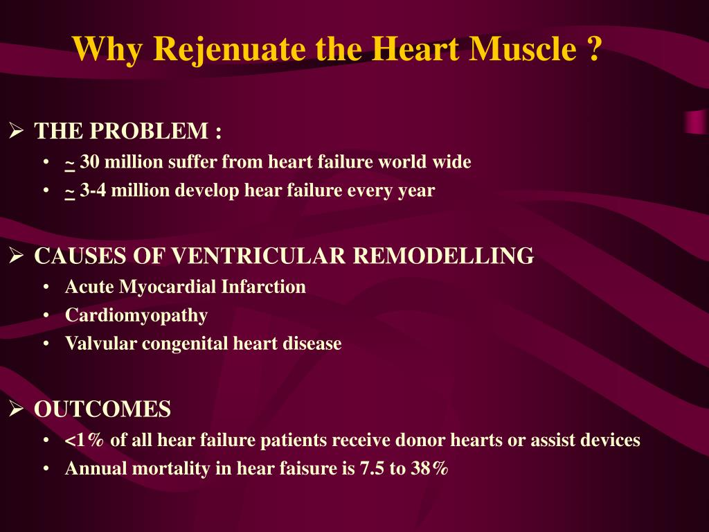 Why Rejenuate the Heart Muscle ?