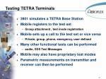 testing tetra terminals