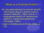 what is a criminal profile