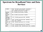 spectrum for broadband voice and data services
