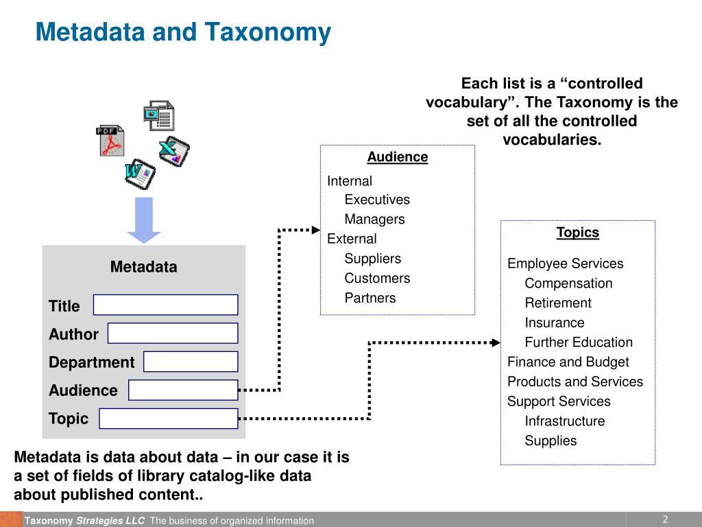 Metadata and Taxonomy