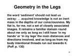 geometry in the legs