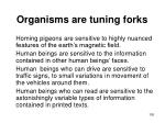 organisms are tuning forks100