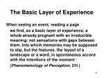 the basic layer of experience