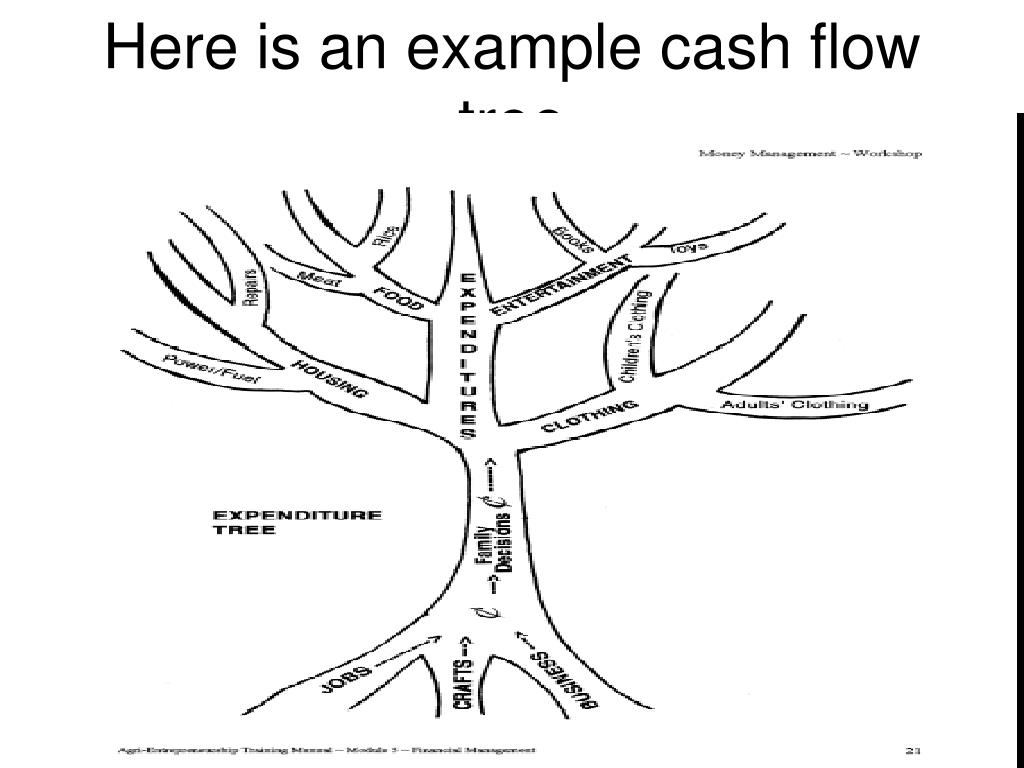 Here is an example cash flow tree