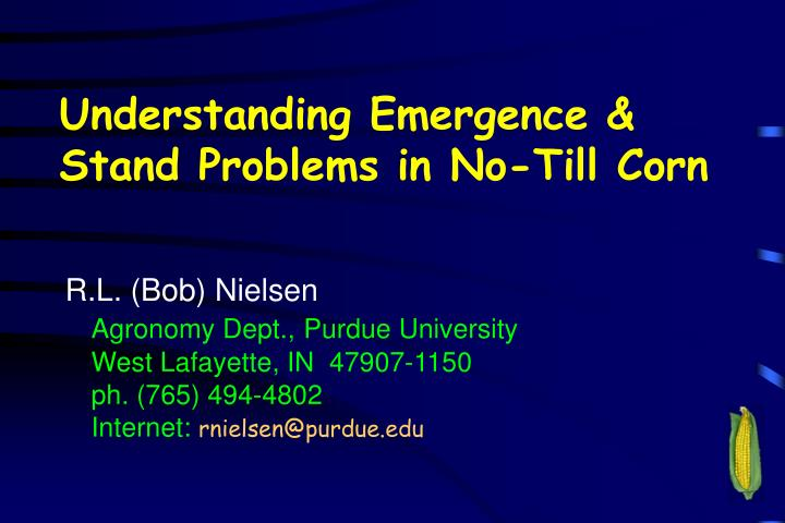 understanding emergence stand problems in no till corn n.