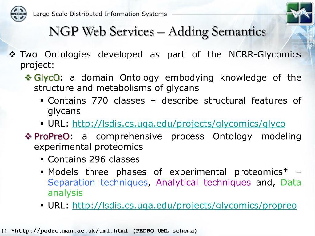 NGP Web Services – Adding Semantics