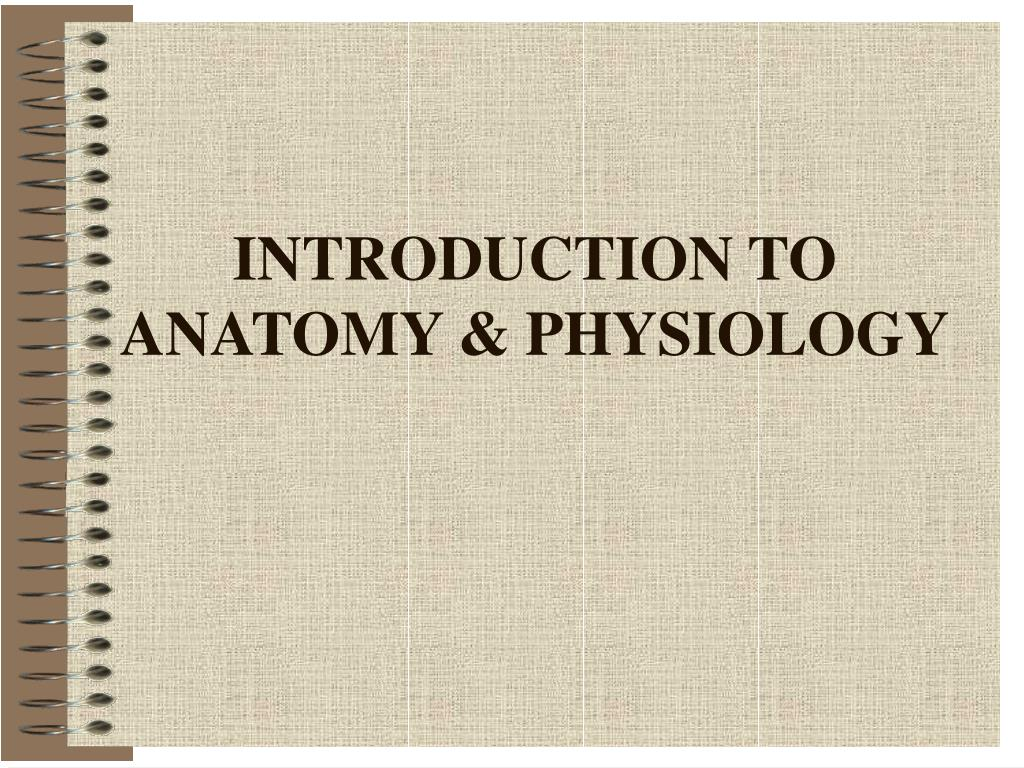 introduction to anatomy physiology l.