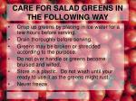 care for salad greens in the following way