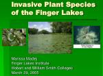 invasive plant species of the finger lakes