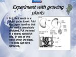 experiment with growing plants