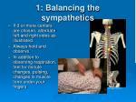 1 balancing the sympathetics2