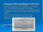 traube hering mayer waves