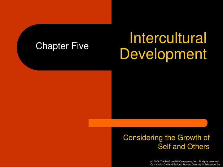 intercultural development n.