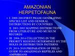 amazonian herpetofauna