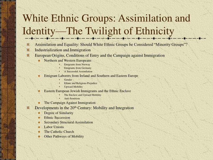 White ethnic groups assimilation and identity the twilight of ethnicity