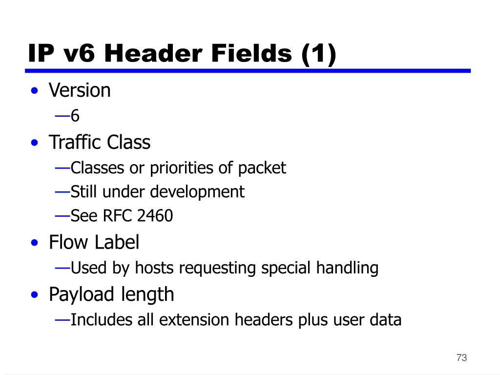 IP v6 Header Fields (1)