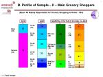 b profile of sample ii main grocery shoppers