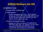gsbug hardware info sig26