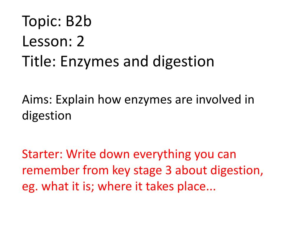 topic b2b lesson 2 title enzymes and digestion