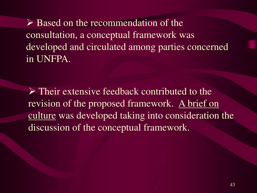 Based on the recommendation of the consultation, a conceptual framework was developed and circulated among parties concerned in UNFPA.