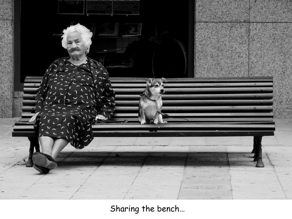 Sharing the bench…
