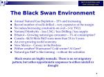 the black swan environment