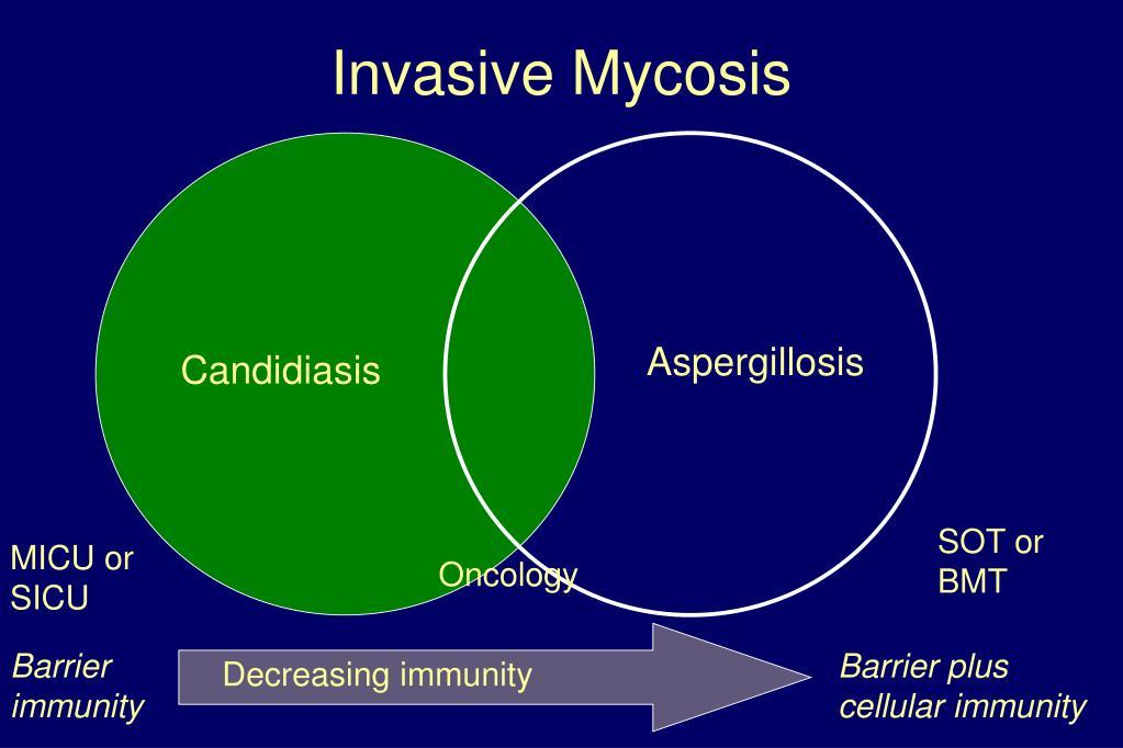 Invasive Mycosis