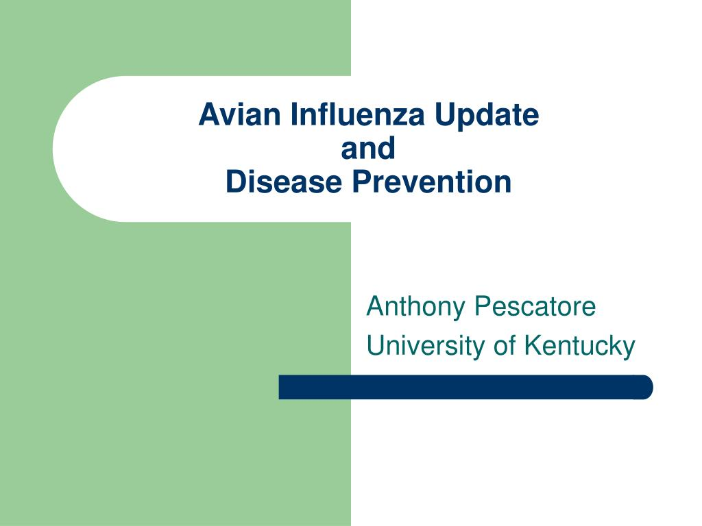 avian influenza update and disease prevention l.
