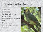 species profiles amazons