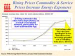rising prices commodity service prices increase energy exposures