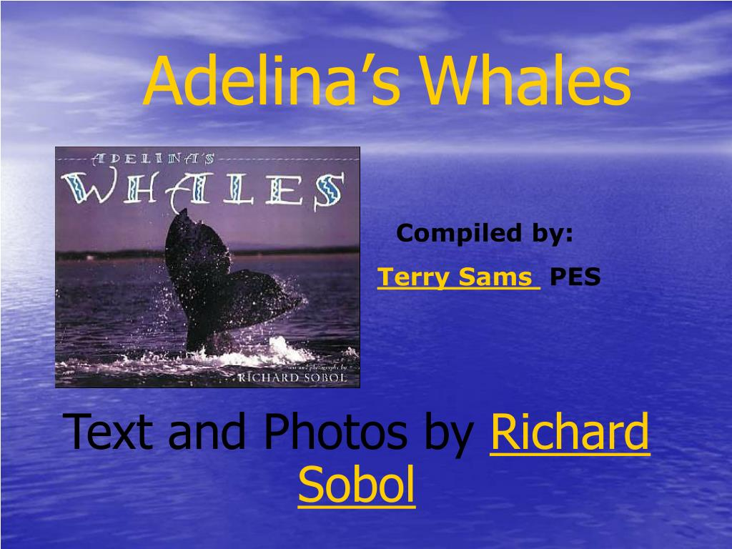 adelina s whales l.