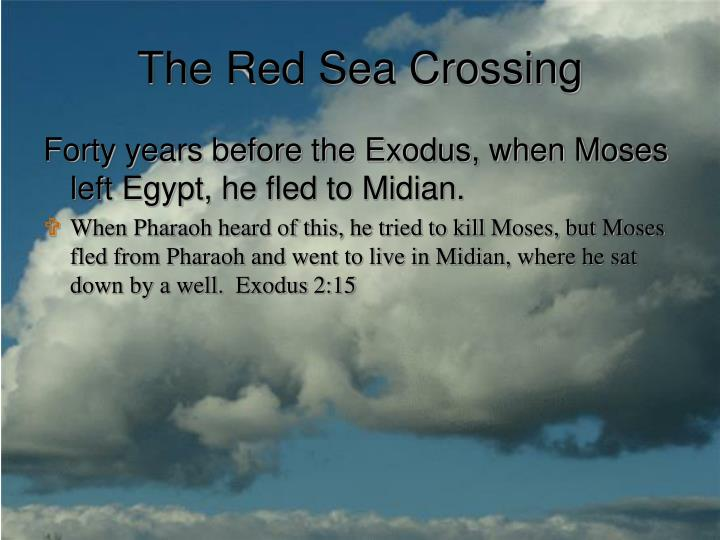 The red sea crossing3