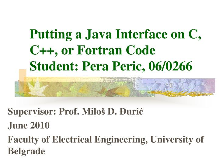 putting a java interface on c c or fortran code student pera peric 06 0266 n.