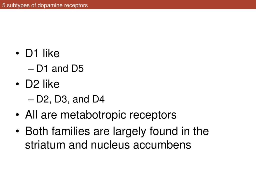 5 subtypes of dopamine receptors