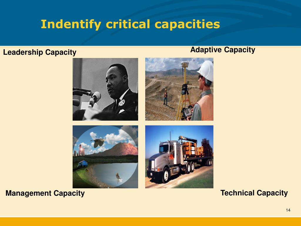 Indentify critical capacities