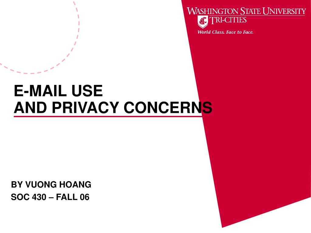 e mail use and privacy concerns l.