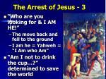 the arrest of jesus 3