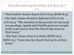 priscilla and aquila what did they do17