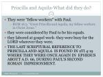 priscilla and aquila what did they do19