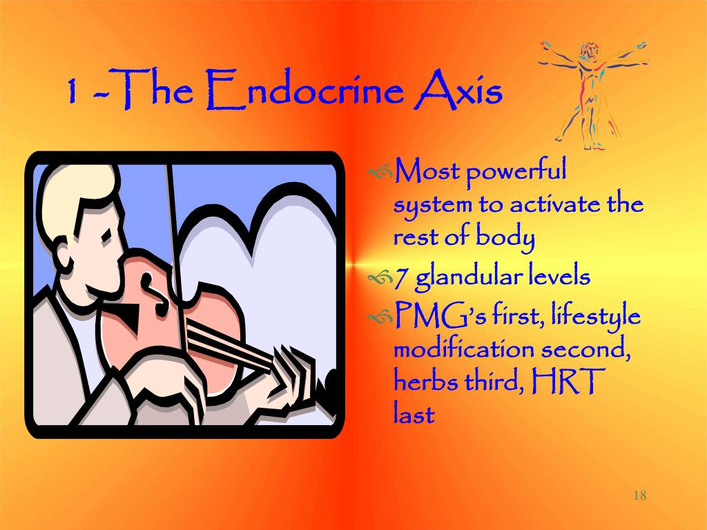 1 -The Endocrine Axis