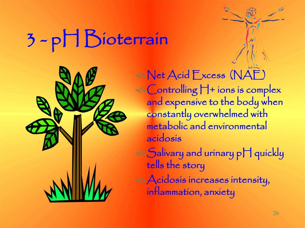 3 - pH Bioterrain