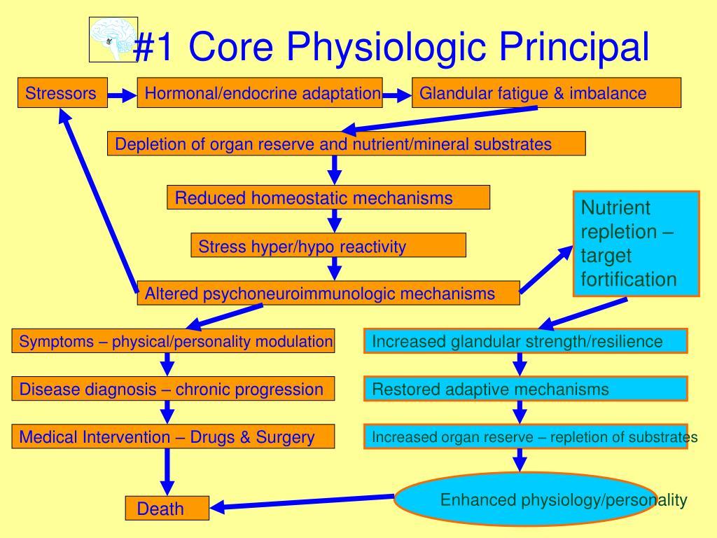 #1 Core Physiologic Principal