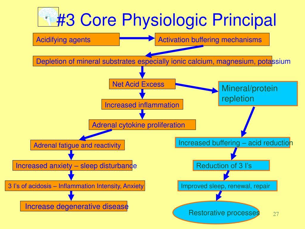 #3 Core Physiologic Principal