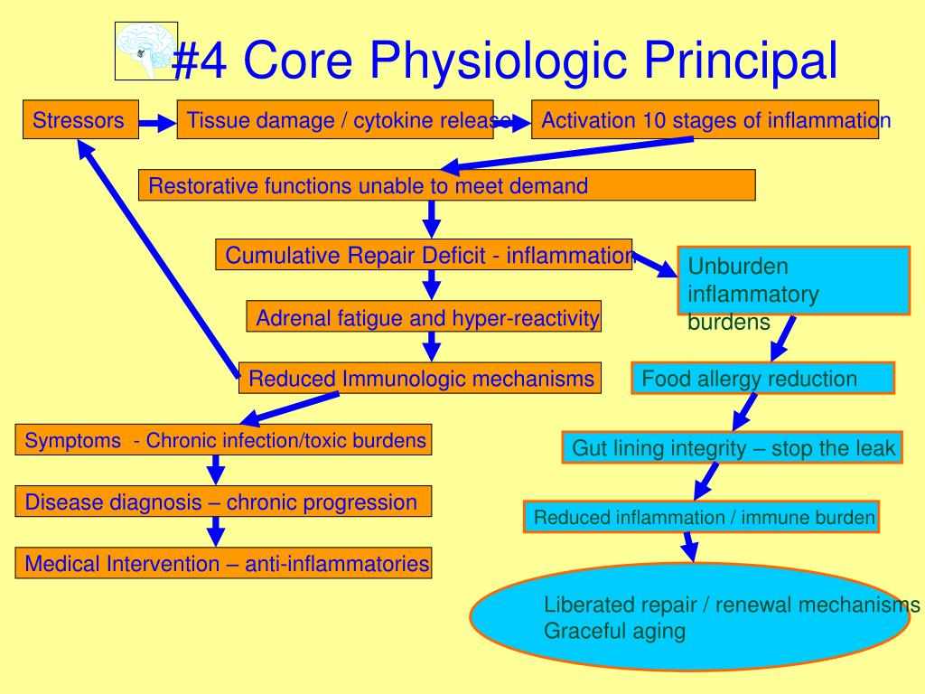 #4 Core Physiologic Principal