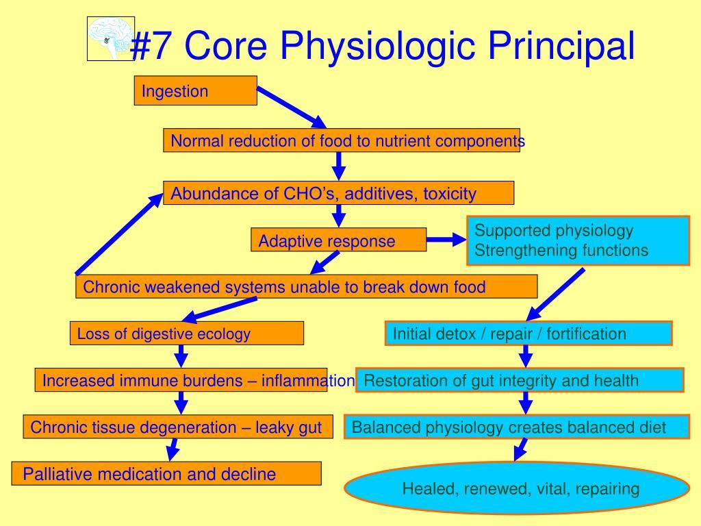 #7 Core Physiologic Principal