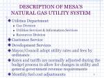 description of mesa s natural gas utility system