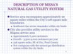 description of mesa s natural gas utility system5