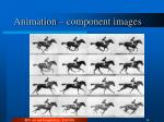 animation component images