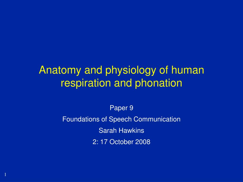 anatomy and physiology of human respiration and phonation l.